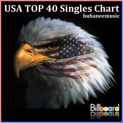 USA Hot Top 40 Singles Chart 11-January-2014