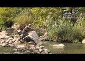 """Видеоприложение к журналу """"Рыбачьте с нами"""" №51 ( Ноябрь ) 2013"""
