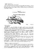Современная энциклопедия охоты (2013) PDF