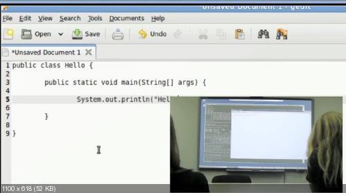 Видеокурс Java для тестировщиков (2010)