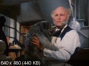Грейфраерс Бобби: Правдивая история собаки (1961) DVDRip