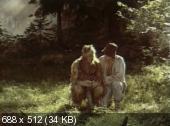 Андрей и злой чародей (1981) DVDRip