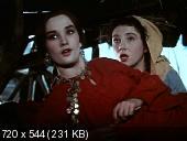Казаки (1961) DVDRip