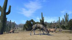 Cabela's Big Game Hunter: Pro Hunts (2014/ENG/USA/PS3)
