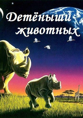 Animal Planet. Детеныши животных / Animal maternity [01-05] (2013) SATRip