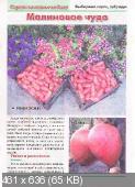 Сезон у дачи. Спецвыпуск (№2, февраль / 2015)