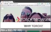 Torch Browser 36.0.0.8979 - �������