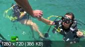 Коралловые сады   (2014) HDTVRip