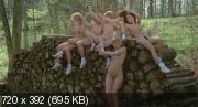 Шесть шведок в Альпах (Полная версия) (1983) BDRip