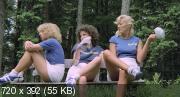 Шесть шведок в пансионате (1979) BDRip