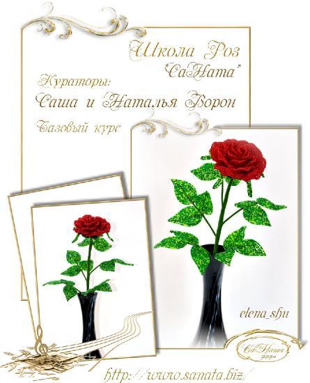 Школа Роз. Выпуск Базового курса 979030c3d90cbab2ee0e790f8f49792c