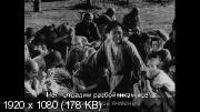 Семь самураев (1954) Blu-Ray Remux (1080p)