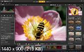 Corel PaintShop Pro X7 17.2.0.16 Special Edition + Content (2015/ML/RUS)