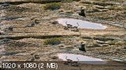 Остров лемуров: Мадагаскар  3Д / Island of Lemurs. Madagascar 3D Вертикальная анаморфная