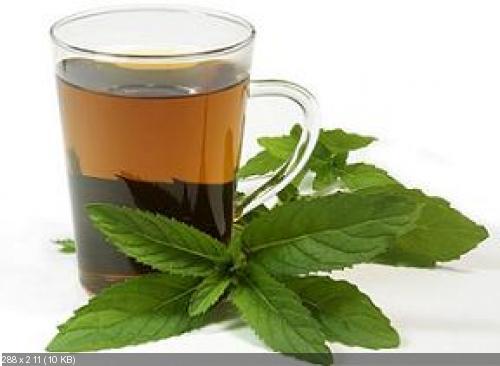 Чай с мелиссой при давлении