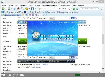 SlimBrowser 7.00 Build 130